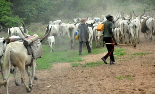 Pastoralists-farmers conflicts in Nigeria: Time for Fulani capitalism, not herdsmen terrorism