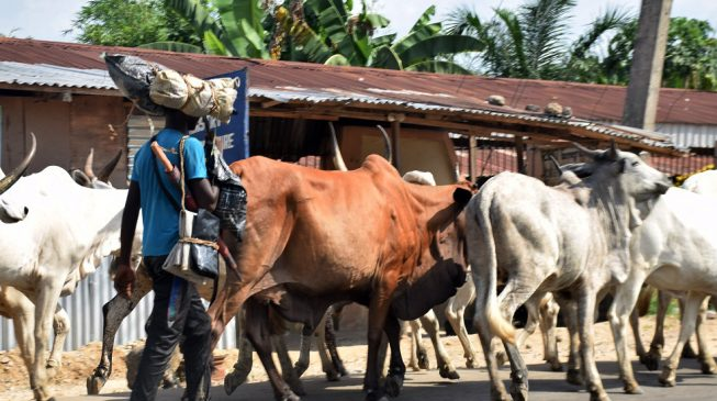 'Herdsmen' kill four in Taraba — after governor's alarm