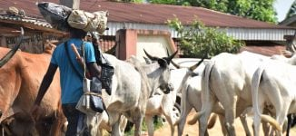 'Herdsmen' sack two communities, raze 27 houses in Nasarawa