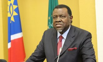 Namibian president bans overseas trip for officials
