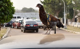 REPORTER'S DIARY: How comments in Washington DC caused fuel queues in Nigeria
