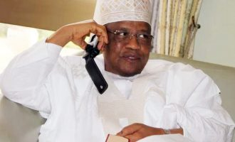 'IBB is alive and bubbling' — spokesman dispels death rumour