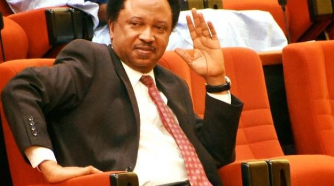 Missing N36m: Shehu Sani storms JAMB headquarters with snake charmers