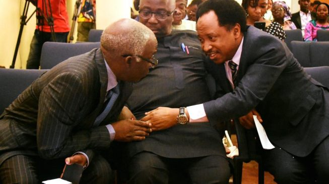 Falana: Shehu Sani's revelation shows Nigerian legislators are highest paid in the world