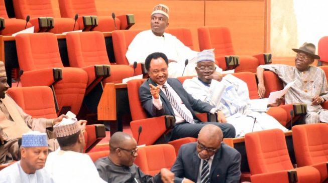 Senate passes bill to recognise June 12 as Democracy Day