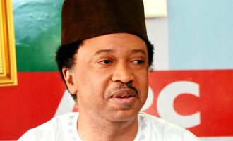 Shehu Sani on Kaduna loan: You are a slave if you borrow money and can't pay