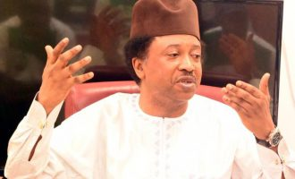 Buhari has succumbed to the firepower of governors, says Shehu Sani on APC crisis