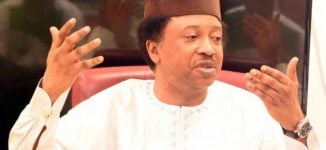 Shehu Sani: some governors spend weekdays in Abuja while their states are in flames