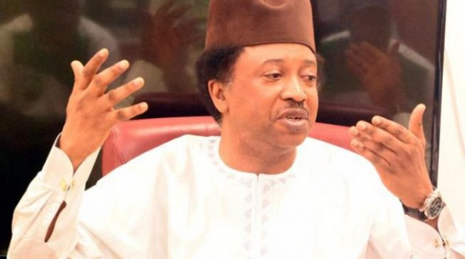 'Danger still living with us' — Shehu Sani speaks on Kaduna church attack
