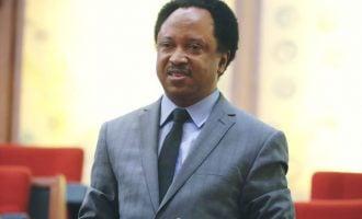 Most Nigerian politicians lack ideology, says Shehu Sani