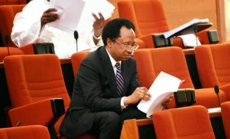 Shehu Sani: SURE-P, N-Power are handouts for political gain