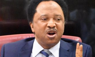 Shehu Sani to FG: Spend Abacha loot on things Nigerians can see with their 'korokoro' eyes