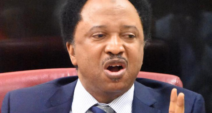 'I've been framed but I won't be silenced' — Shehu Sani reacts to extortion allegation