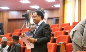 Shehu Sani wants victims of 'mindless killings' buried close to Aso Rock