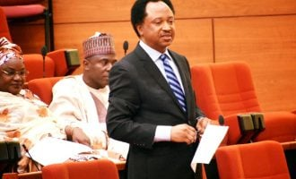 Shehu Sani tackles FG over security appointments, makes case for south-east