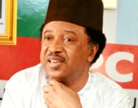 Shehu Sani describes indirect primary as a breeding ground for corruption