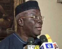 Adebanjo to FG: You can't declare 'Amotekun' illegal… there are similar outfits in the north