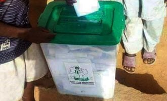 MATTERS ARISING: Ballot box reads Kano but INEC says underage voters are from Kenya