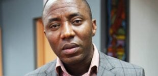 'I'm not just a fan but a member of Fela's household' — Sowore hits back at Burna Boy