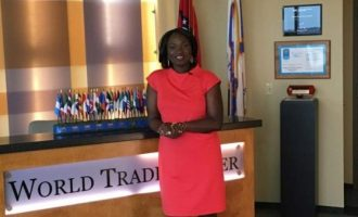 Tapping Toyin Umesiri, others for Africa reputation building in United States