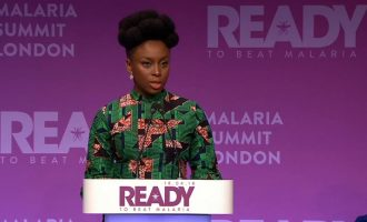 Chimamanda: Blame malaria for my poor grasp of mathematics