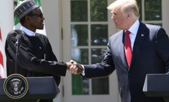 Rep to Buhari: I expected you to correct Trump that not only Christians are being killed