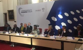 Okonjo-Iweala chairs Commonwealth session attended by world leaders — including 3 African presidents