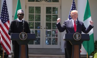 Buhari has done a great job on security, says Trump
