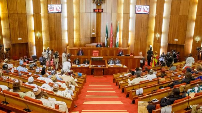 Senate approves N234bn for 2019 elections