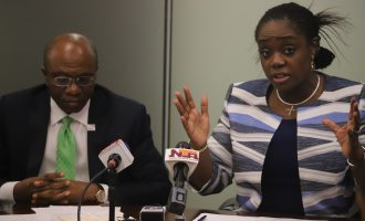 Adeosun, Emefiele: We never confirmed attendance at investors' meeting in Washington