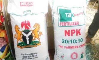 Mass fertiliser exports 'could commence in two years'