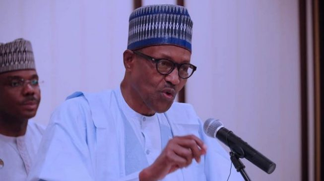 JOHESU strike, Leah Sharibu, Amnesty report — issues Buhari didn't address in Democracy Day speech
