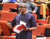 FACT CHECK: Did FG assign Abaribe to negotiate with IPOB over Biafra agitation?