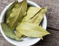 Eat Me: Good for diabetics, relieves anxiety… six reasons bay leaf is 'bae'