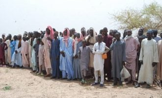 FAO says Nigeria 'in need of external food assistance'
