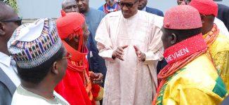 Buhari 'working to develop' Niger Delta