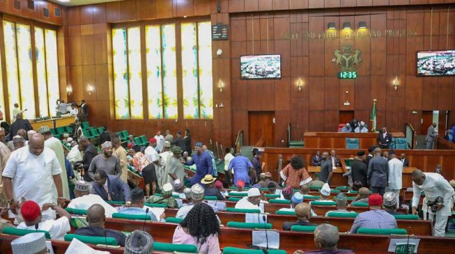 You lack power to probe criminal cases, court tells n'assembly