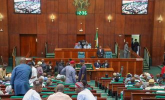 The national assembly and 2019 budget