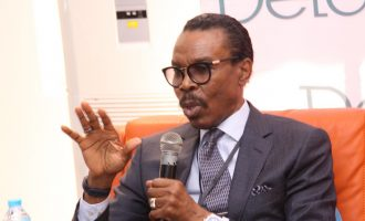 Rewane: Nigeria lacks discipline to execute ideas