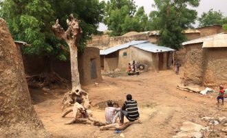 Amnesty: Armed bandits have killed 371 in Zamfara since January