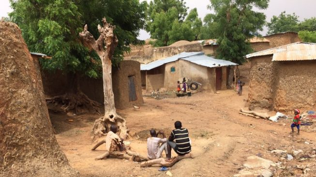 Amnesty: Armed bandits have killed 371 in Zamfara since January