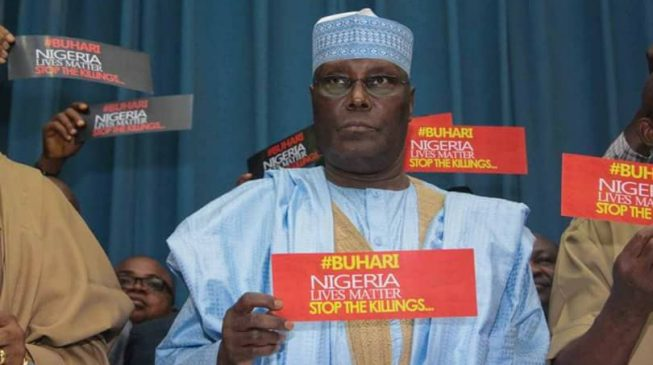 INEC tells tribunal: Atiku parading fabricated election results