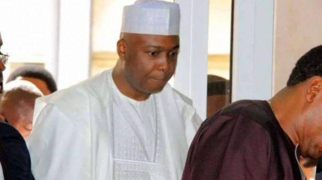 Allow Saraki drown in his own water, Garba Shehu tells Buhari's supporters