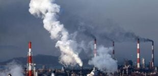 Report: How reduction in emissions will affect businesses in developing nations