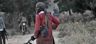 Report: Boko Haram kills 25 soldiers in Borno ambush