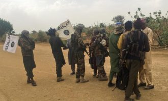 How Boko Haram fighters looted Adamawa towns