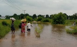 30,000 displaced as flood sacks 35 communities in Edo