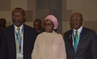 Emefiele: More national assets will be privatised