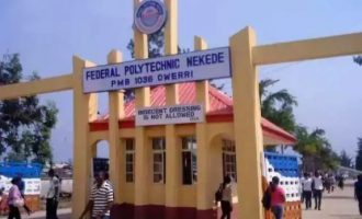 Federal Poly Nekede ranked best polytechnic in Nigeria