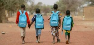 APPLY: UNICEF announces job opening for nutrition specialist in Nigeria